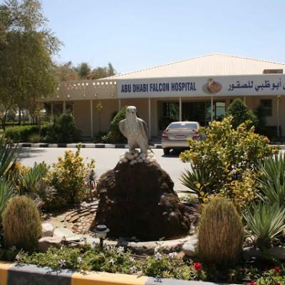 [Urlaub] Abu Dhabi – Falkenhospital