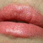 Shiseido Rouge Perfect