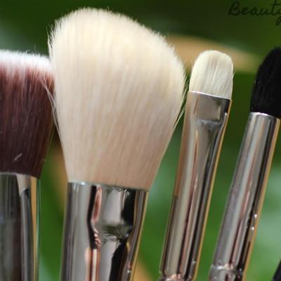 Top 5 – Meine fünf liebsten Makeup Pinsel
