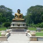 [Travelguide] Sri Lanka im Schnelldurchlauf und Handwerkskunst in Indien