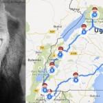 Gorilla Trekking in Uganda – Vorbereitungen für meine erste Afrika-Reise