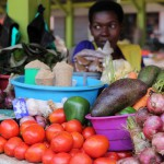 Unique Uganda VIII – Spaziergang, Marktbesuch & Rhino Sanctuary