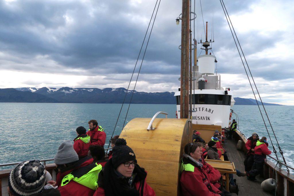 2-husavik-whale-watching-north-sailing-iceland-island-walbeobachtung-www-beautybutterflies-de-3