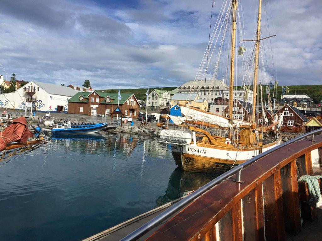2-husavik-whale-watching-north-sailing-iceland-island-walbeobachtung-www-beautybutterflies-de