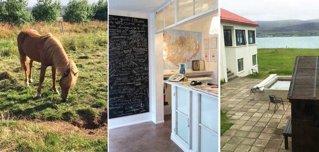 4b-skjaldarvik-guest-house-akureyri-www-beautybutterflies-de