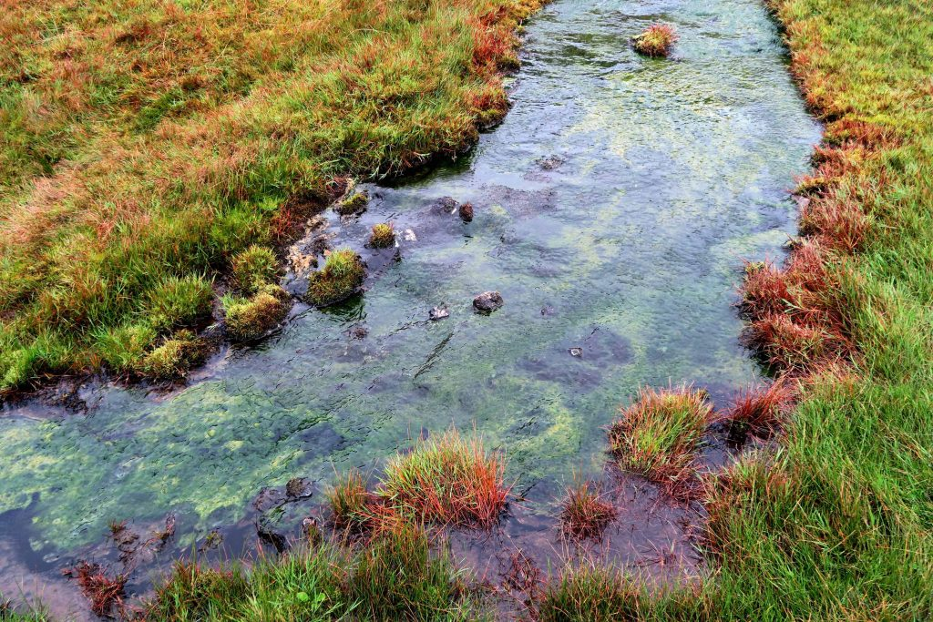 around-reykjavik-reykjadalur-geothermal-heisse-quellen-hot-river-fluss-www-beautybutterflies-de