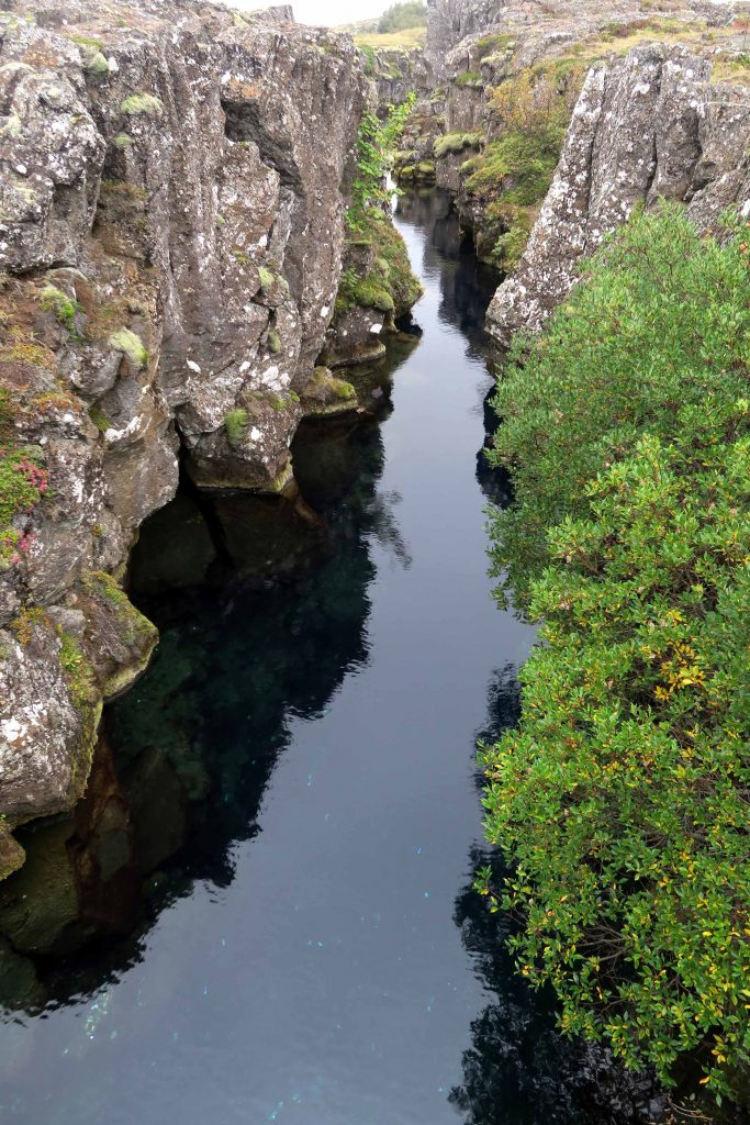 around-reykjavik-thingvellir-national-park-erdspalte-golden-circle-tauchen-island-diving-www-beautybutterflies-de