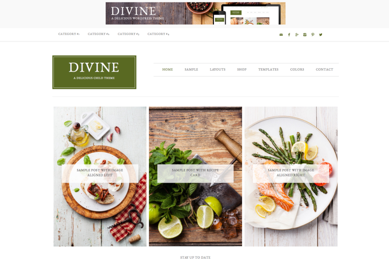 Mein WordPress Theme - Divine