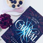 6 neue Buchrezensionen – Ich lese einfach zu viel…
