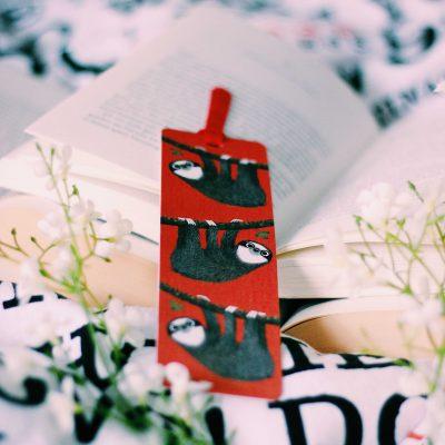 6 neue Buchrezensionen – Von Bücherdieben und Elefanten