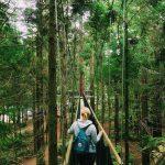 Rotorua – Zu touristisch oder sehenswert?