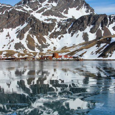 Antarktis Tagebuch #10 – Grytviken: Auf Spuren der Walfänger