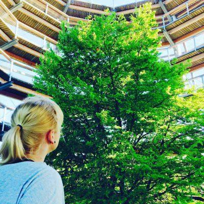 Urlaub in Deutschland – Wunderschöne Natur vor der Haustür