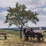 Genusstour in Deutschland – Weinwanderung in Bensheim