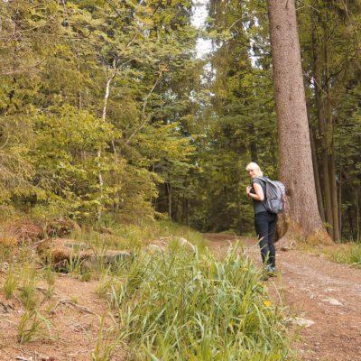Umgekehrte Brockenwanderung – Dampflok & Wandern