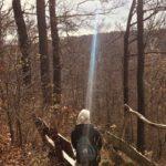 Rückblick November – Mein Lockdown Light Tagebuch #2